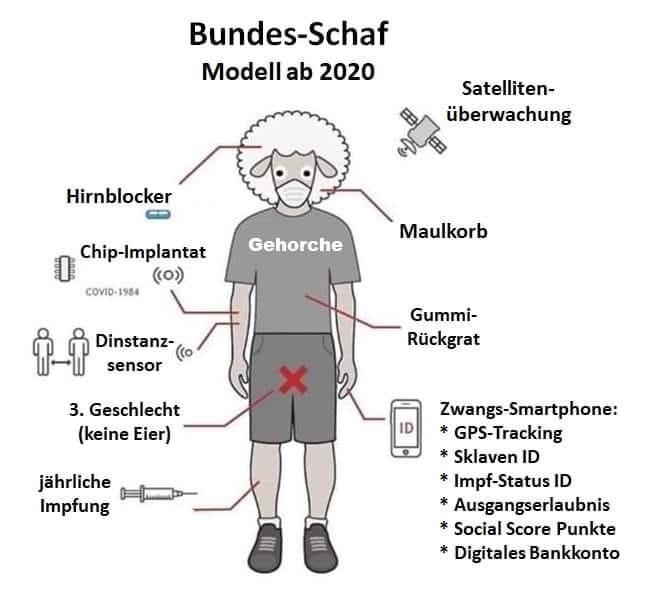 Bundes-Schaf