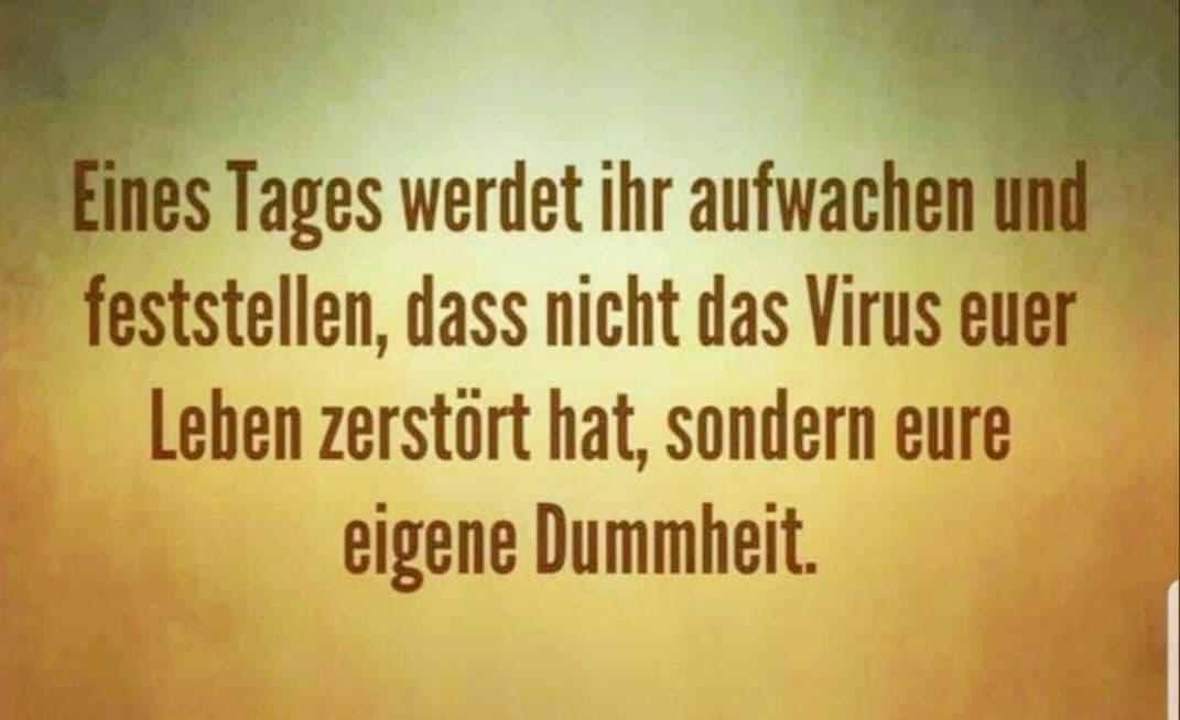 Virus oder Dummheit