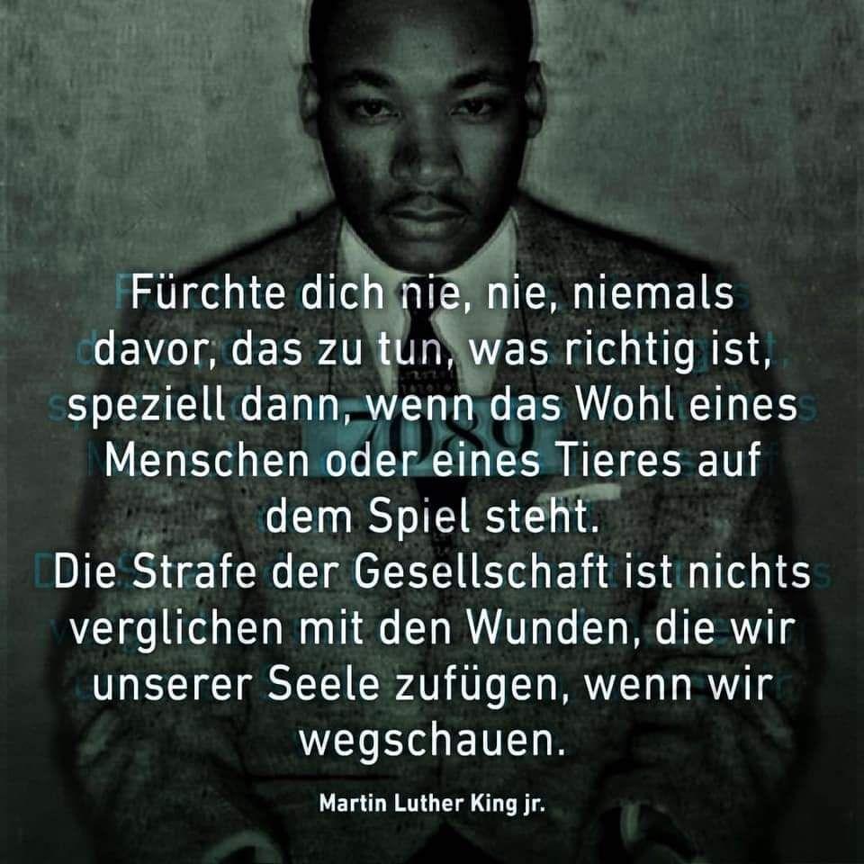 Zitat Martin Luther King